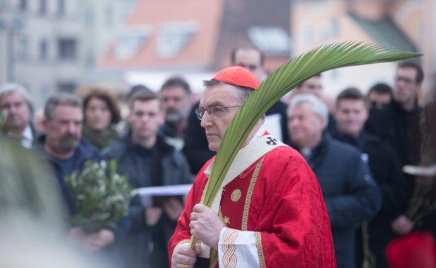 Svečano proslavljen blagdan Cvjetnice u Zagrebačkoj katedrali