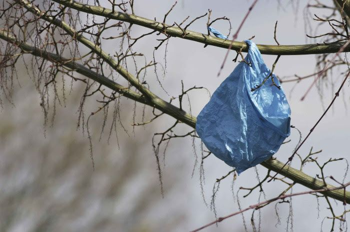 """""""MEĐUNARODNI DAN BEZ PLASTIČNIH VREĆICA"""" Prijatelji životinja: Jednokratna plastika – dugotrajna opasnost"""