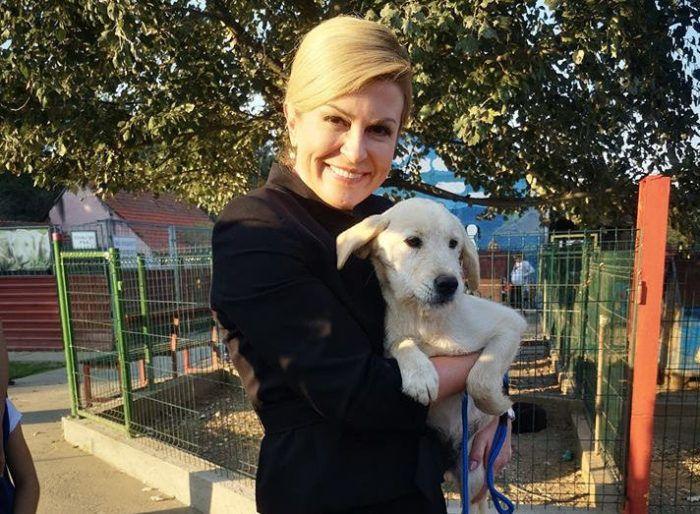 "Javna pohvala Prijatelja životinja plemenitom Predsjedničinu činu udomljavanja psa iz skloništa – Kolinda i Kika ""Prvi pas – udomljeni pas"""