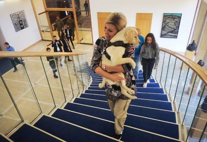 Dani otvorenih vrata u Uredu predsjednice Grabar-Kitarović posvećeni životinjama u skloništima