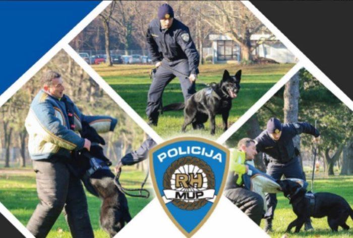 MUP za policijske potrebe nabavlja pse svih pasmina