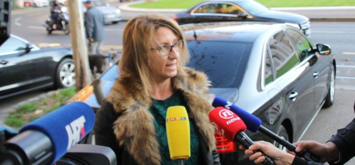 Maletić: Još nismo razgovarali o listama za Europski parlament, ali pripreme za izbore na terenu traju