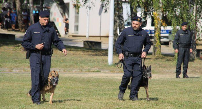 MUP kupuje pse za potrebe Uprave za granicu koji mogu zamijeniti do 30 policijskih službenika