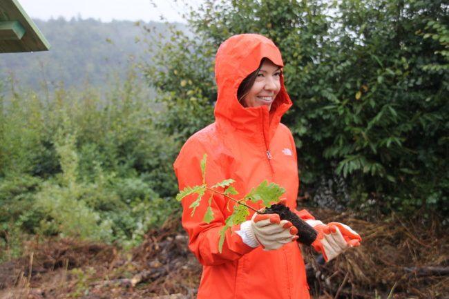 nove usluge upoznavanja sa šumama 16 tipova ličnosti i datiranje
