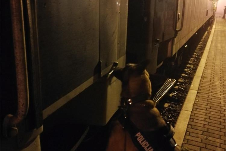 (VIDEO) Na Graničnom prijelazu Tovarniku zahvaljujući policijskom psu spašena trudnica iz Palestine