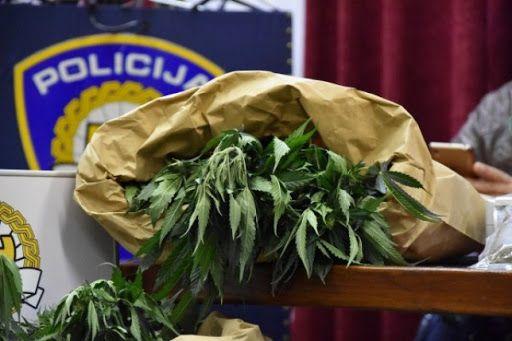 Hrvatska policija početak godine ocijenila uspješnim u suzbijanju trgovine drogom