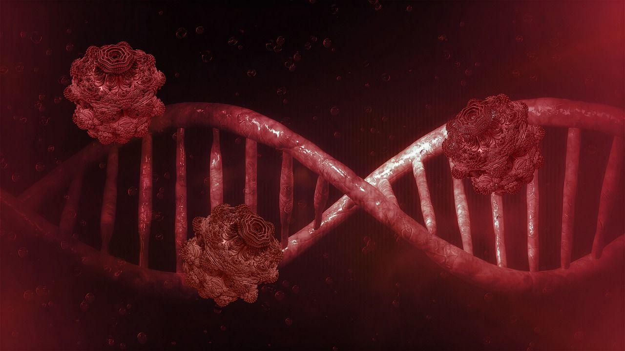 Kineski znanstvenici izolirali dva soja koronavirusa