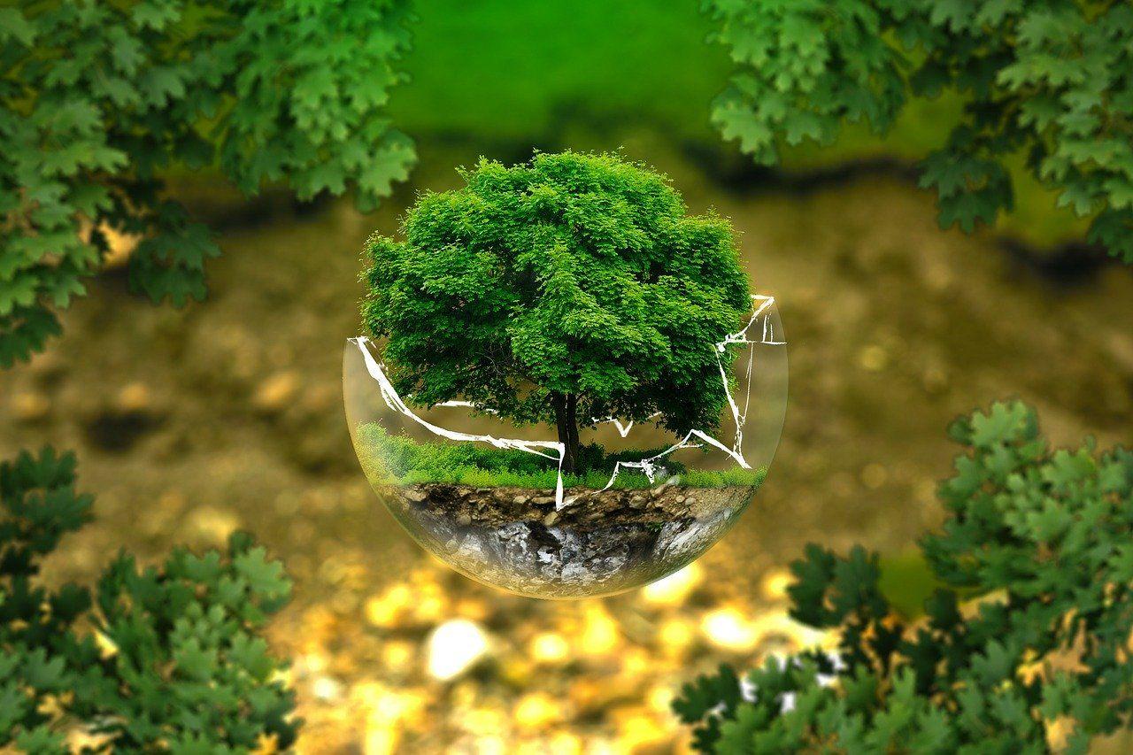 Međunarodni dan biološke raznolikosti i Dan zaštite prirode u RH