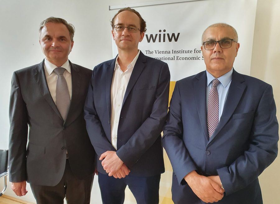 Izvršni direktor Instituta WIIW dr. Mario Holzner primio delegaciju IFIMES-a