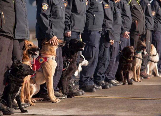 Uz Međunarodni dan potražnih pasa, 25. travnja: Suradnja psa i čovjeka neopisivo je važna