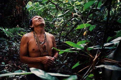 Autohtono stanovništvo poziva svijet da se snažnije angažira na zaštiti Amazonije