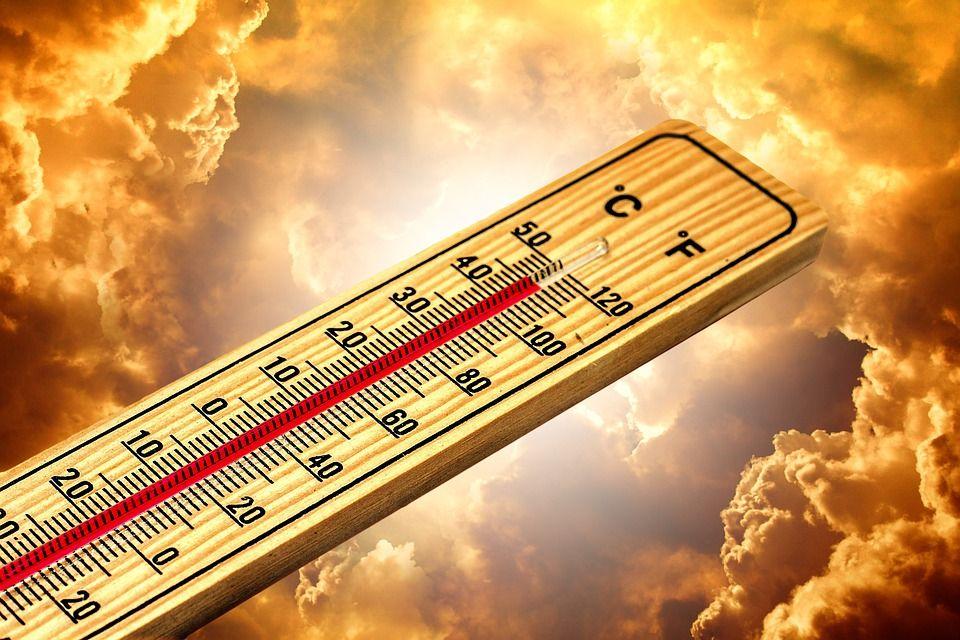 Ljeto 2021. najtoplije u povijesti, kažu europski znanstvenici